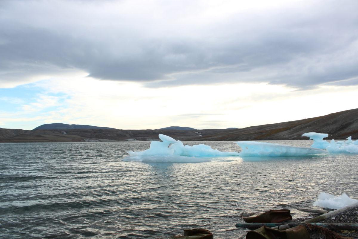 Dr. Balch Presents at Arctic Change 2014