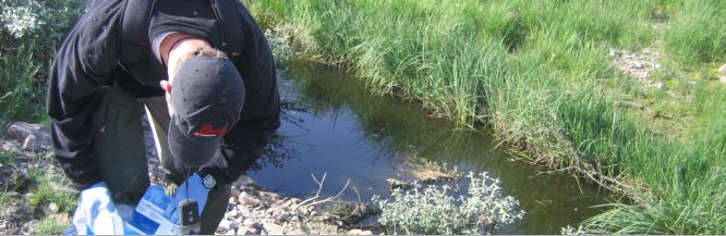 Using Tundra Wetlands to Treat Municipal Wastewater in Canada's Far North